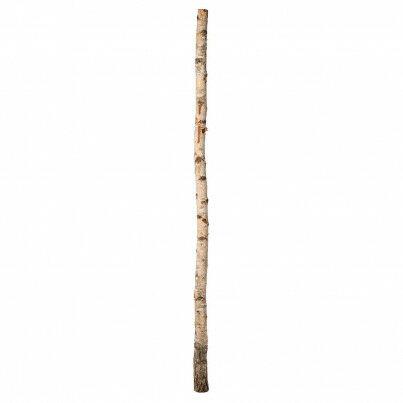 berkenstam met gat in de onderkant zodat je de stam op een voetplaat kunt zetten, naturel, 200 cm
