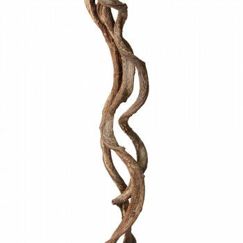 Bundel 'Crazy Vine Sticks' eco-friendly, naturel natuur, 200 cm