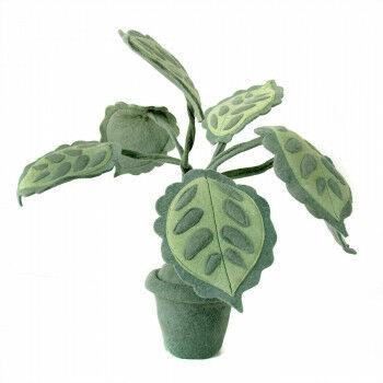 vilten plant pesa, twee-kleurig,