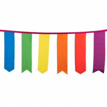 regenboog wimpellijn, 10 meter, vlaggen in 6 kleuren aan pink lint, multicolor textiel, 60 cm