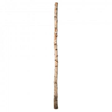 Berkenstam met gat, optioneel: 614-229 voetplaat, naturel natuur, 200 x 10 cm