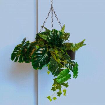 Hangplanten set inclusief hangbak