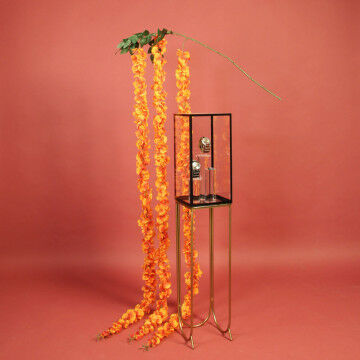 Herfst zuil presentatie naranja