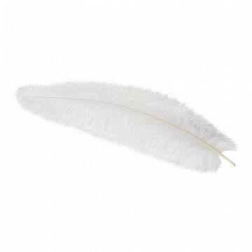 Struisvogelveer, wit natuur, 50 cm