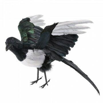 vliegende ekster