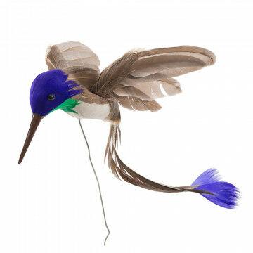 kolibrie die de aandacht trekt door zijn mooie veren, bruin veren, 15 cm