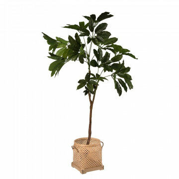 Kunstplant geldboom met mand sumatra
