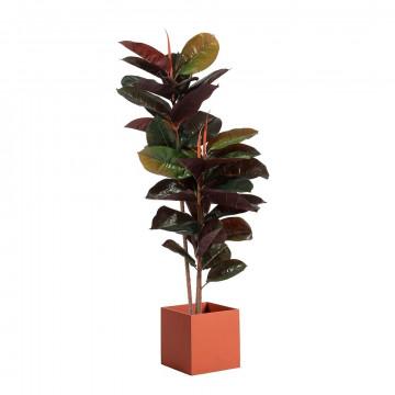 Kunstplant rubberplant met bak vierkant oranje