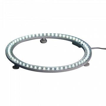 Lichtcirkel met 42 LEDlampjes, helder wit, met adapter, wit metaal, 19 cm