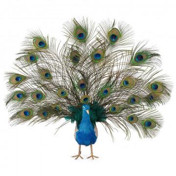 pauw met echte veren en gespreide staart, blauw veren, 56 cm
