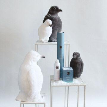Pinguin familie