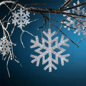 Frozen ijskristal