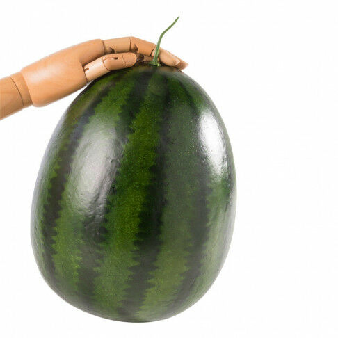 watermeloen voor een smaakvolle presentatie, groen kunststof, 30 x 23 cm