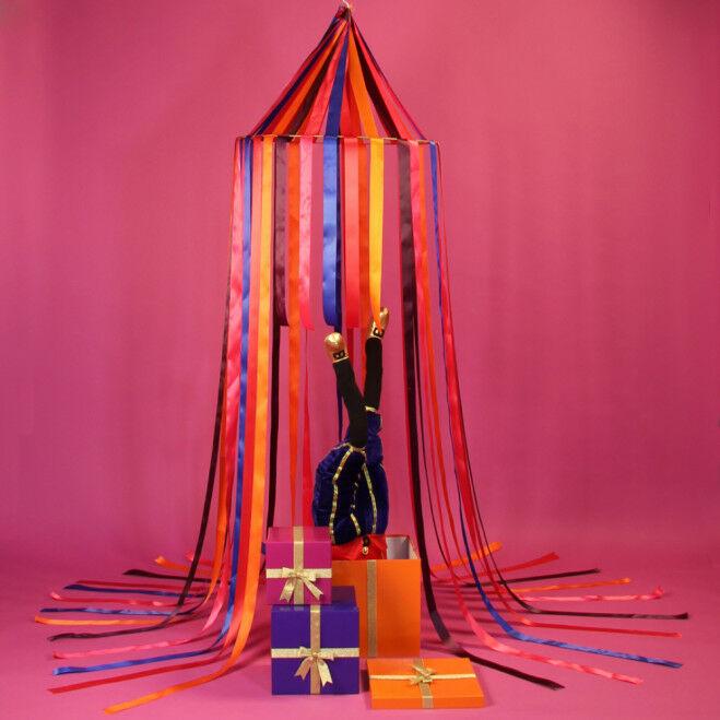 Sinterklaas presentatie circus
