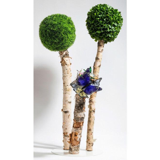 Alternatieve bomen